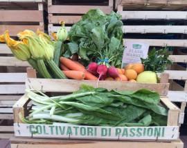 Cassetta mista di frutta e verdura di stagione a km zero - Flash Market Roma