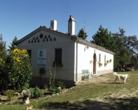 Esterno-Masseria-Testa-Soggiorno-in-Molise-Greenscount-Viaggi-scontati-700x448
